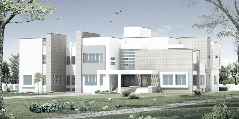 Aaliya Al Owais Villa